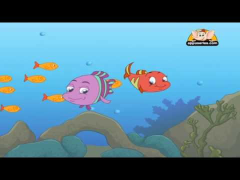 Nursery Rhyme - All The Little Fish