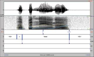 Transcribing Prosodic Structure of Spoken Utterances with ToBI
