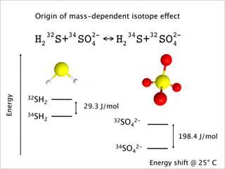 Biogeochemistry of Sulfur