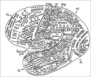 Neuroscience and Society