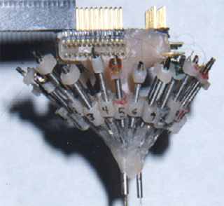 Experimental Methods of Adjustable Tetrode Array Neurophysiology