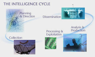 Intelligence: Practice, Problems and Prospects