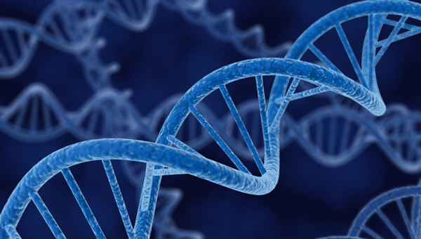 Genetics and Society: A Course for Educators