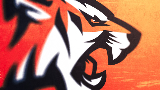 How To Design Sports Logos: Create Your Own Team Mascot