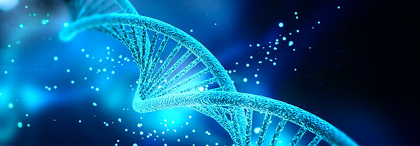 Preparing for the AP * Biology Exam – Part 2: Genetics