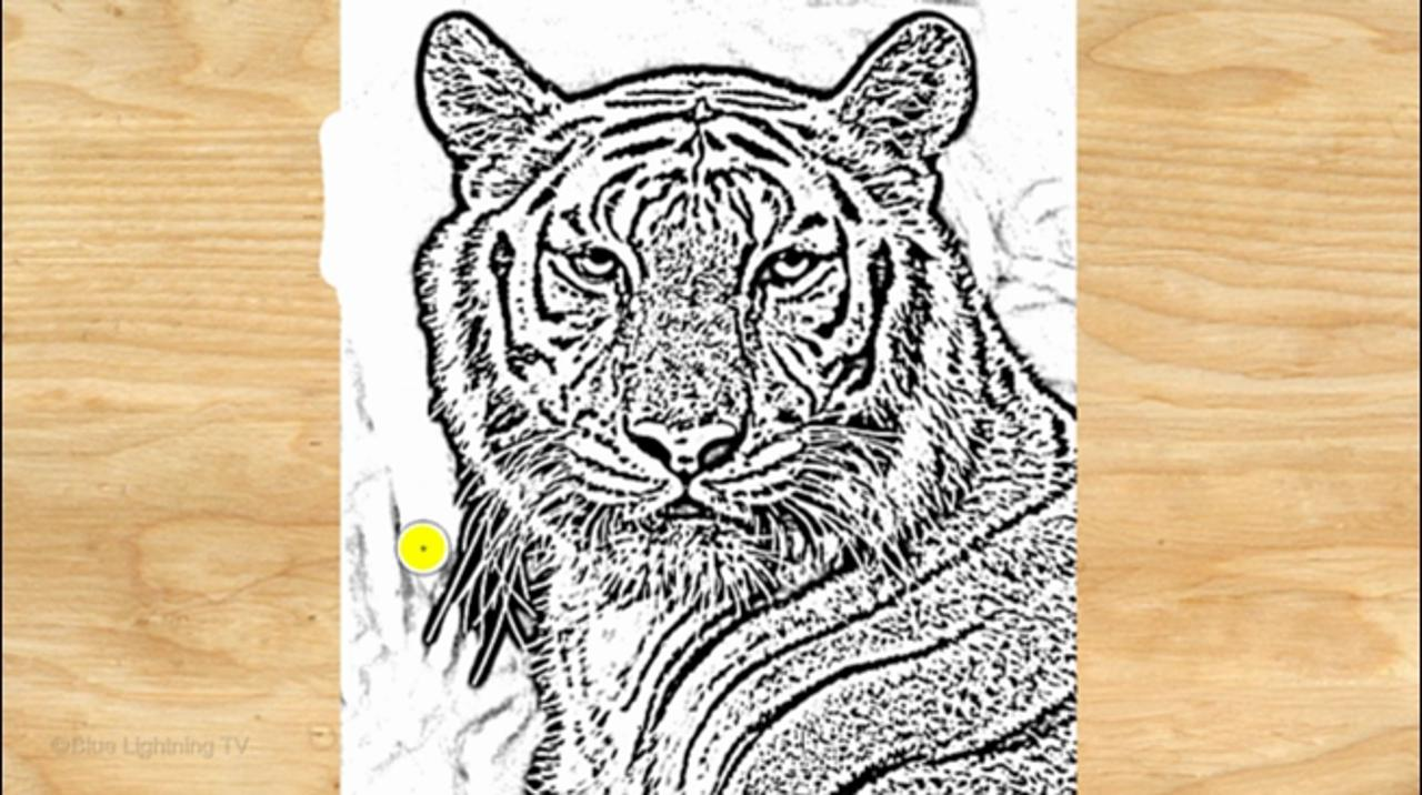 Photoshop: How to Make a Woodcut from a Photo
