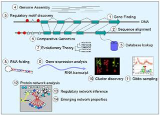 Computational Biology: Genomes, Networks, Evolution
