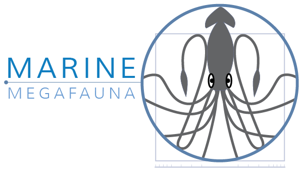 Marine Megafauna: An Introduction to Marine Science and Conservation