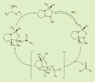 Synthetic Organic Chemistry II