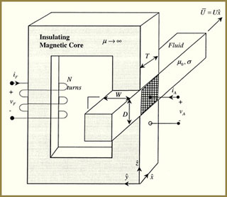 Electromagnetic Fields, Forces, and Motion