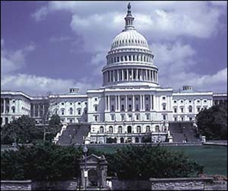 Congress and the American Political System II