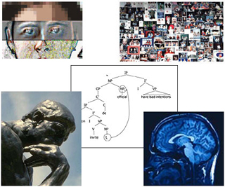 The Brain and Cognitive Sciences II