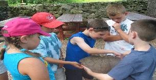 Stony Brook Day Camp
