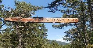 YWCA Camp Westwind